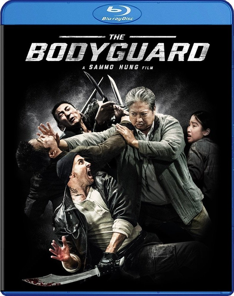 My Beloved Bodyguard 2016 Dual Audio Hindi 720p BluRay 700MB Download