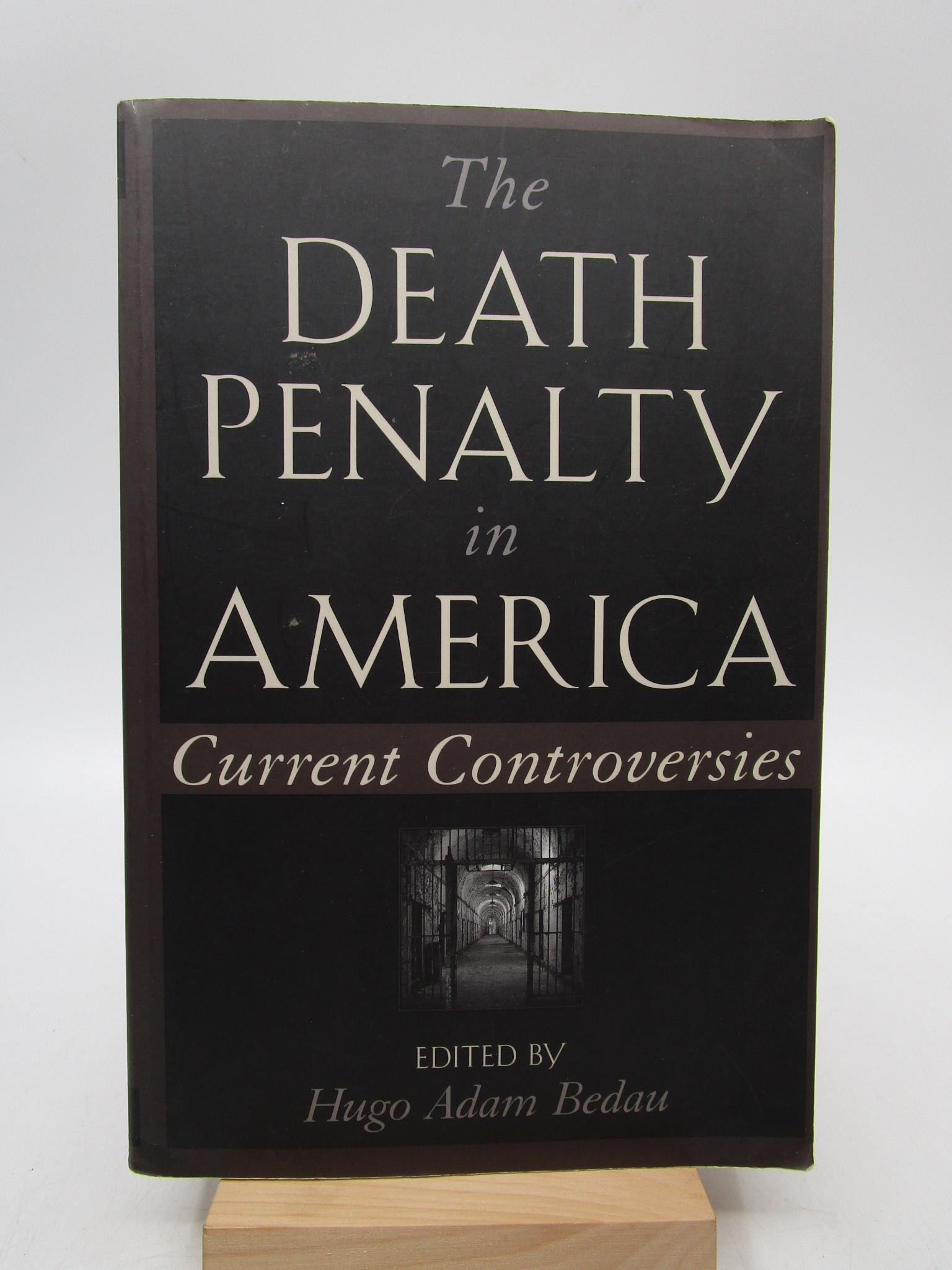Image for The Death Penalty in America: Current Controversies (Oxford Paperbacks)