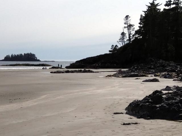 Mackenzie-Beach-at-Tofino-low-tide20190515sf-164140