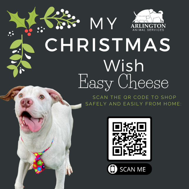 Animal-Services-2020-Angel-Tree-042.png