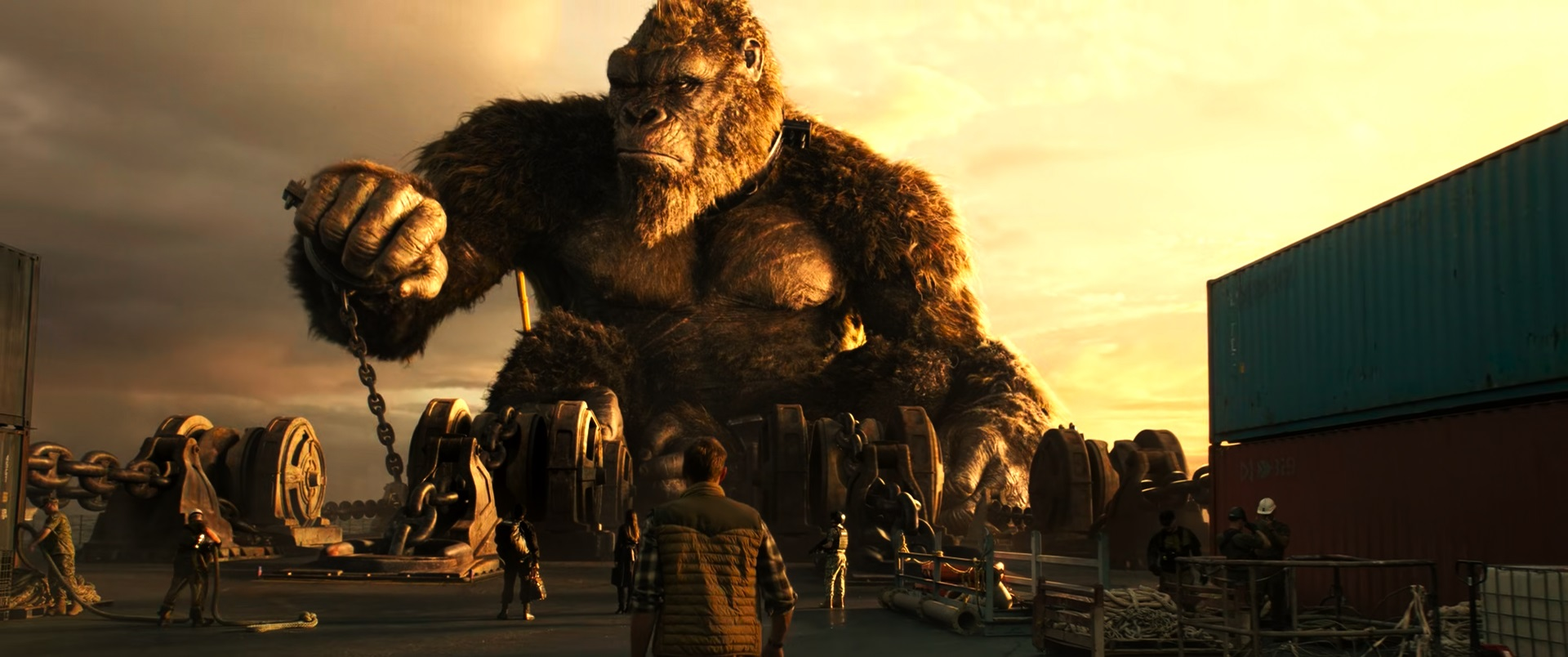 Godzilla vs. Kong | 2021 | WEB-DL | XviD | Türkçe Dublaj | m720p - m1080p | WEB-DL | Tek Link