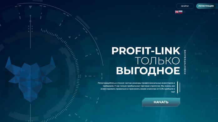 PROFIT-LINK