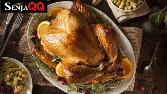 Manfaat Ayam Kalkun, Benarkah Lebih Sehat dari Ayam Biasa?