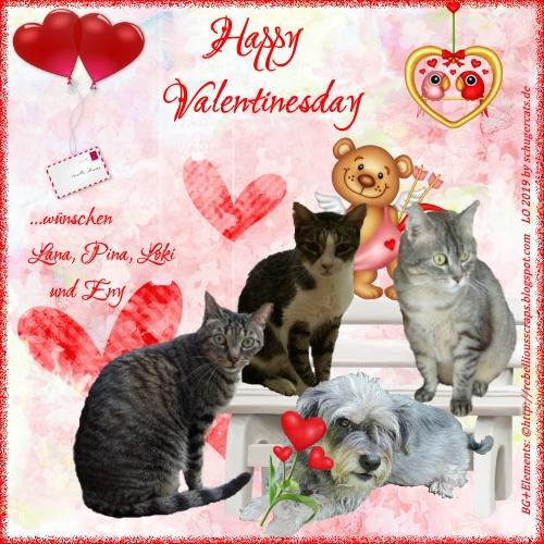 An den Beitrag angehängtes Bild: https://i.ibb.co/r29wcQf/SC-Valentine-Allg.jpg