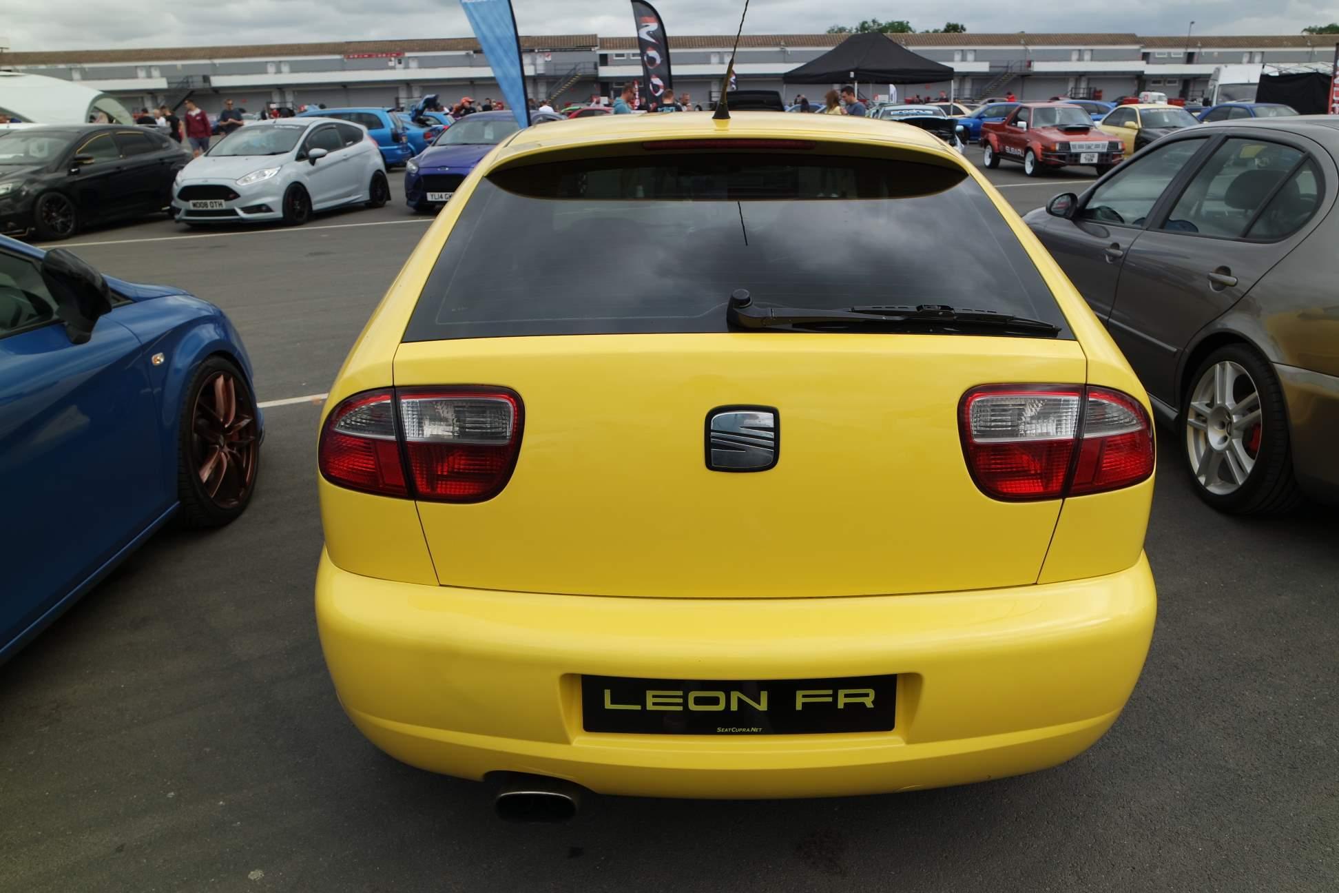 Yellowfr-1.jpg