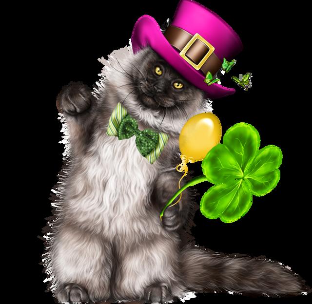 Leprechaun-Cat-With-Beer-52.png