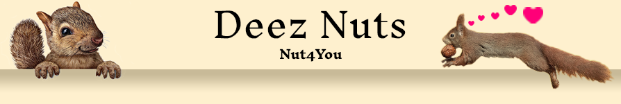 banner-Nut4-You.png