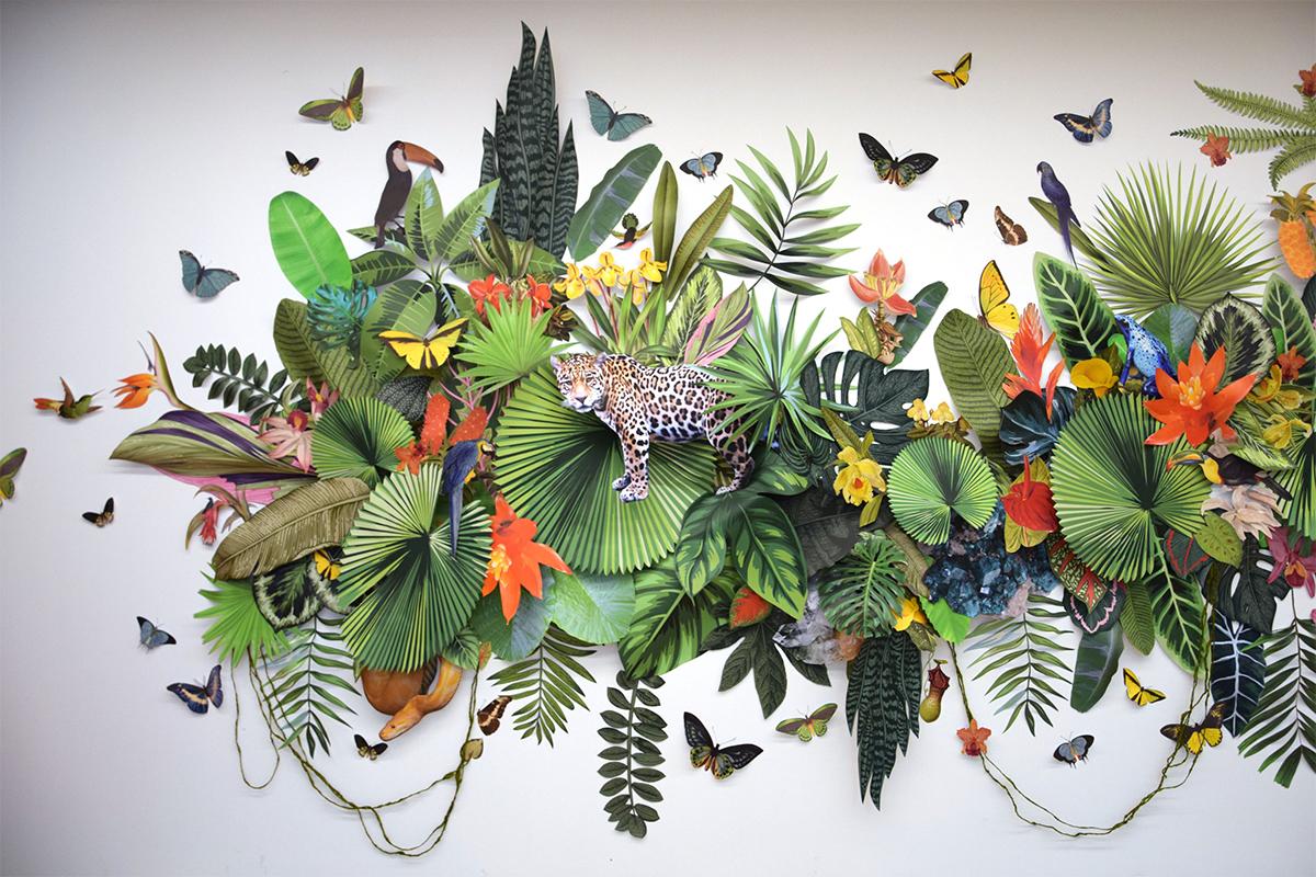 флора і фауна у колажах