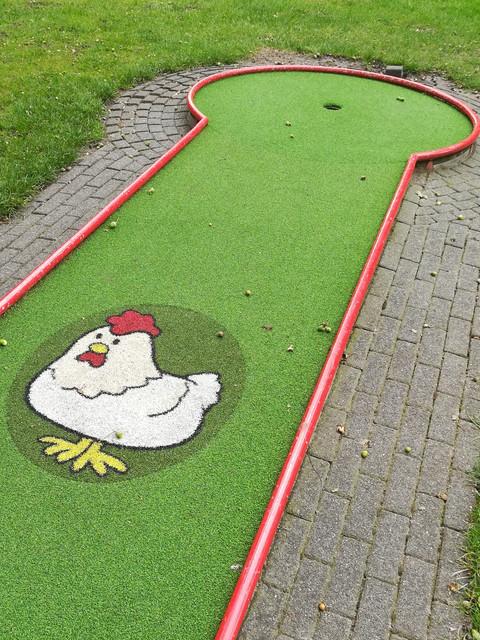 Chicken-golf.jpg