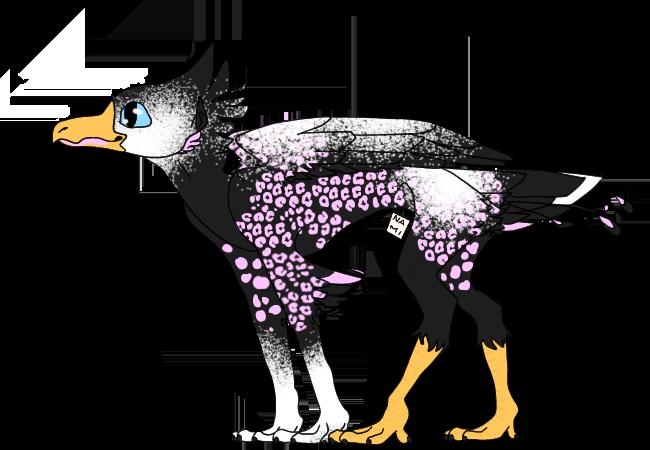 Stone-Bird-Aquatic-20191104210649.png