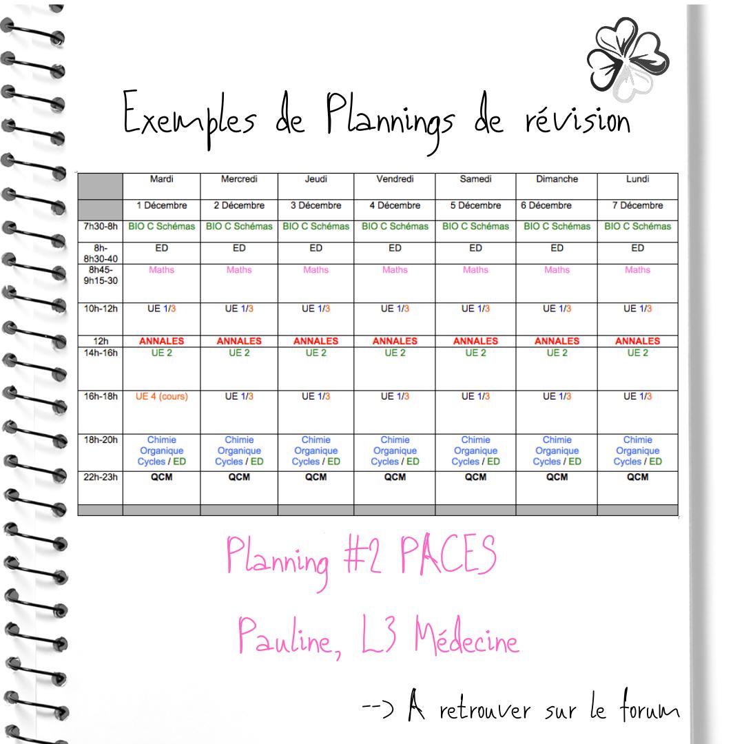 7-Planning-2-PACES-Pauline-L3-Me-decine-
