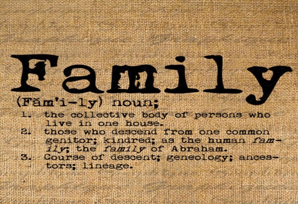 Family Dictionary Children's