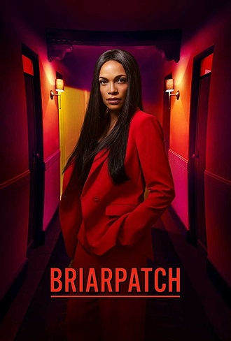 Briarpatch Season 1 Complete Download 480p All Episode