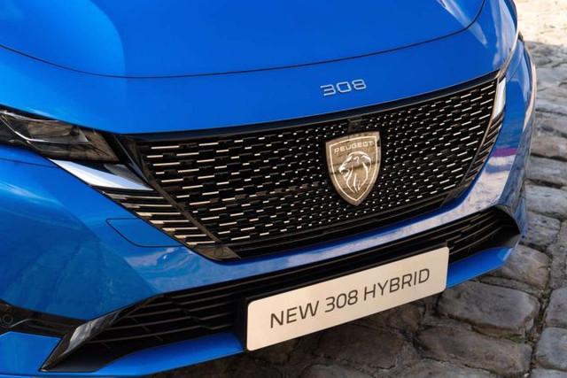 2021 - [Peugeot] 308 III [P51/P52] - Page 19 C9014049-7184-42-CF-8-F3-B-4-B7-EA1117-BA5