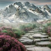 [Image: mountain-landscape-2031539-480.jpg]