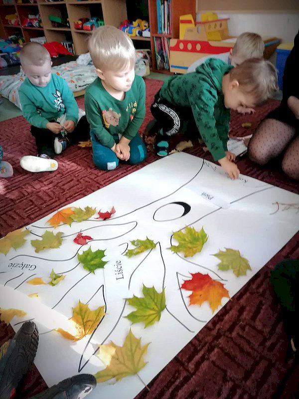 Ekolog-i-s-wie-to-drzewa-199.jpg