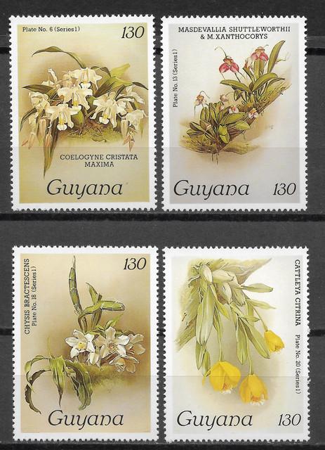 O Guyana 1385