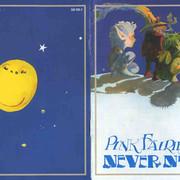 Pink-Fairies71-Never-book-1