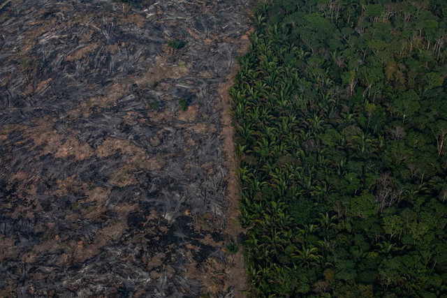 PORTO-VELHO-RONDONIA-BRAZIL-AUGUST-25th-A-fire-burns-in-a-section-of-the-Amazon-rainforest-on-August