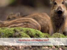 Banner evento formativo del 19.10.2017