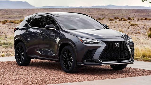 2021 - [Lexus] NX II - Page 2 8542-BFBE-4-E09-49-B8-908-C-2-B5749-C20-E65