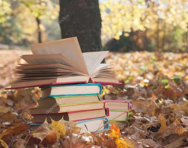 Ветер читает книги
