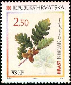 2002. year HRVATSKA-FLORA-HRASTOVI-KITNJAK