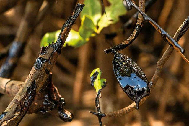 Foto6-Mar-de-Agosto-livro-Mateus-Morbeck-artistavisual-Bahia-foto-Divulgacao
