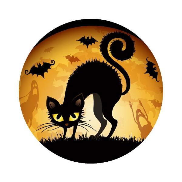 Scary-Black-Cat