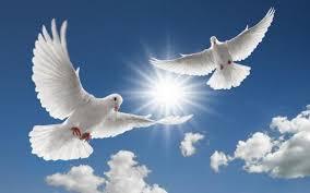 [Image: doves.jpg]