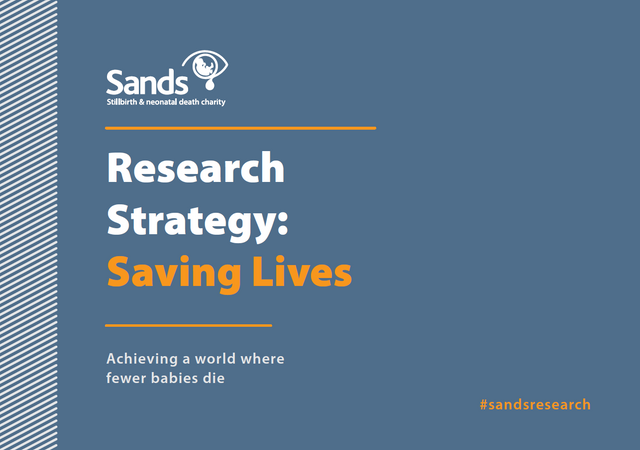 Sands-research-Strategy