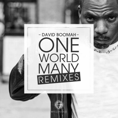 David Boomah - One World Many Remixes 2014
