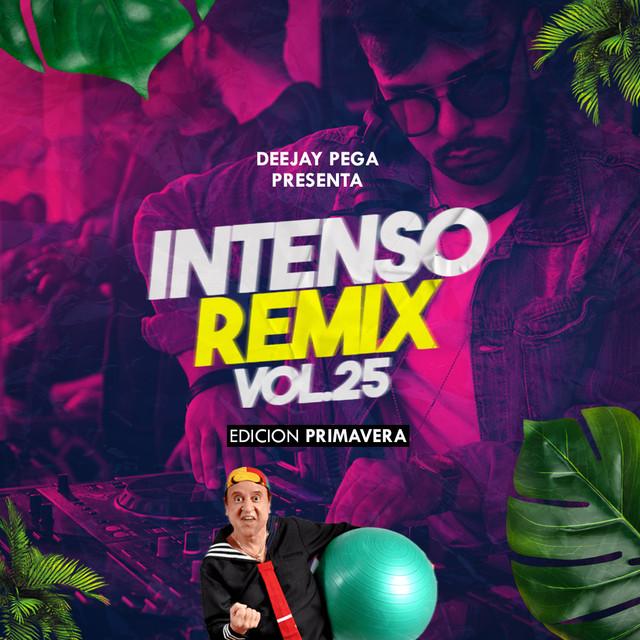 INTENSO REMIX - VOLUMEN 25