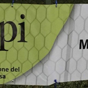 Zapi-Garden