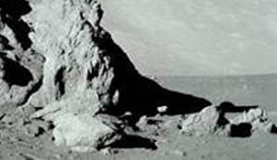 image219