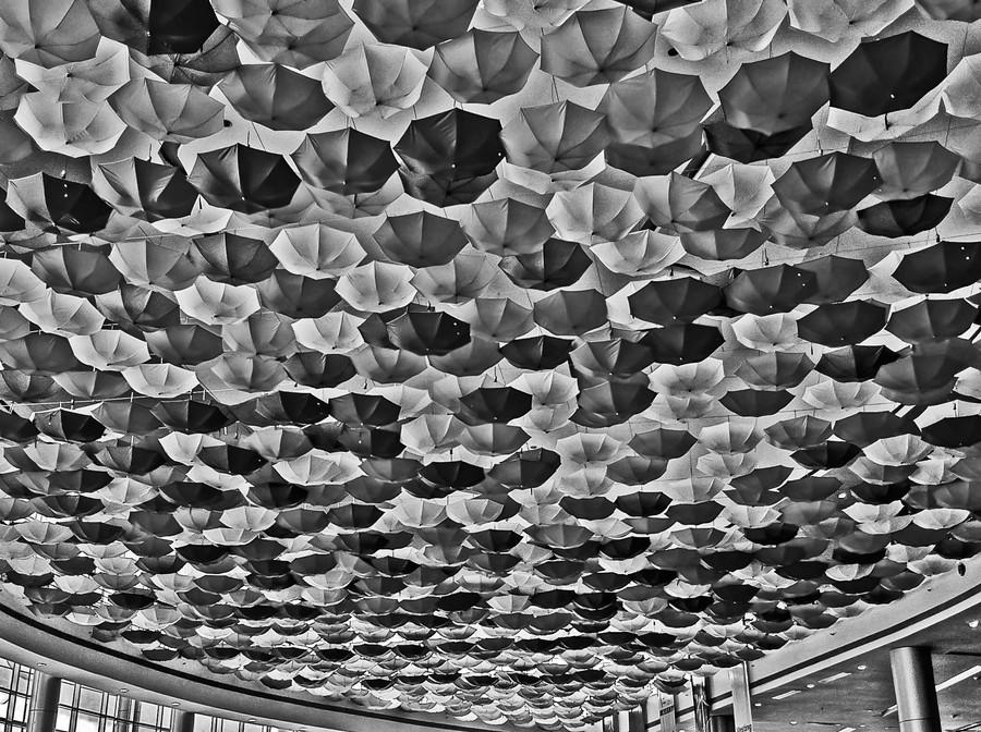 10 лучших абстрактных фотографий 2014 года по версии 500px