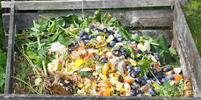 5 Steps to Make Compost from Kitchen Waste