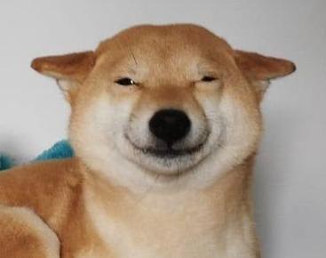 Grinning-Doggo.jpg