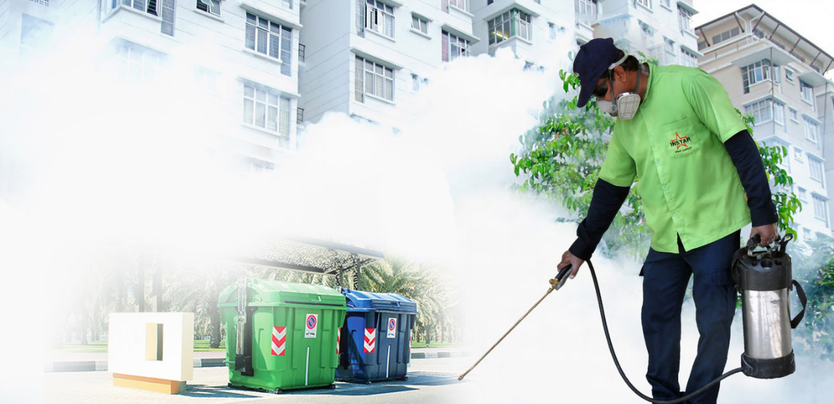 The Benefits Of Hiring Professional Pest Control Services
