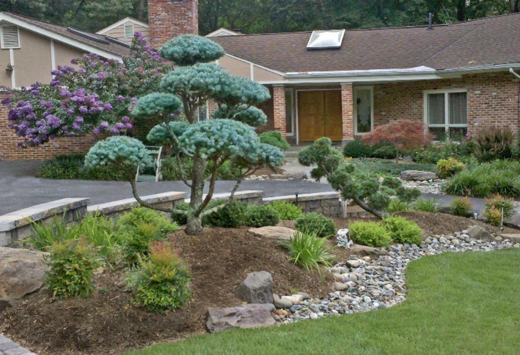 Home Gardening Decoration