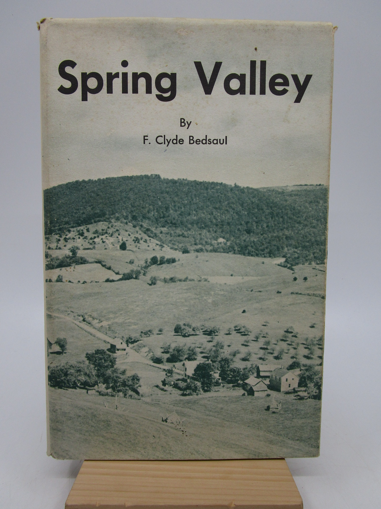 Image for Spring Valley (First Edition)