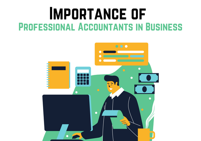 Importance-of-Professional-Accountants-in-Business