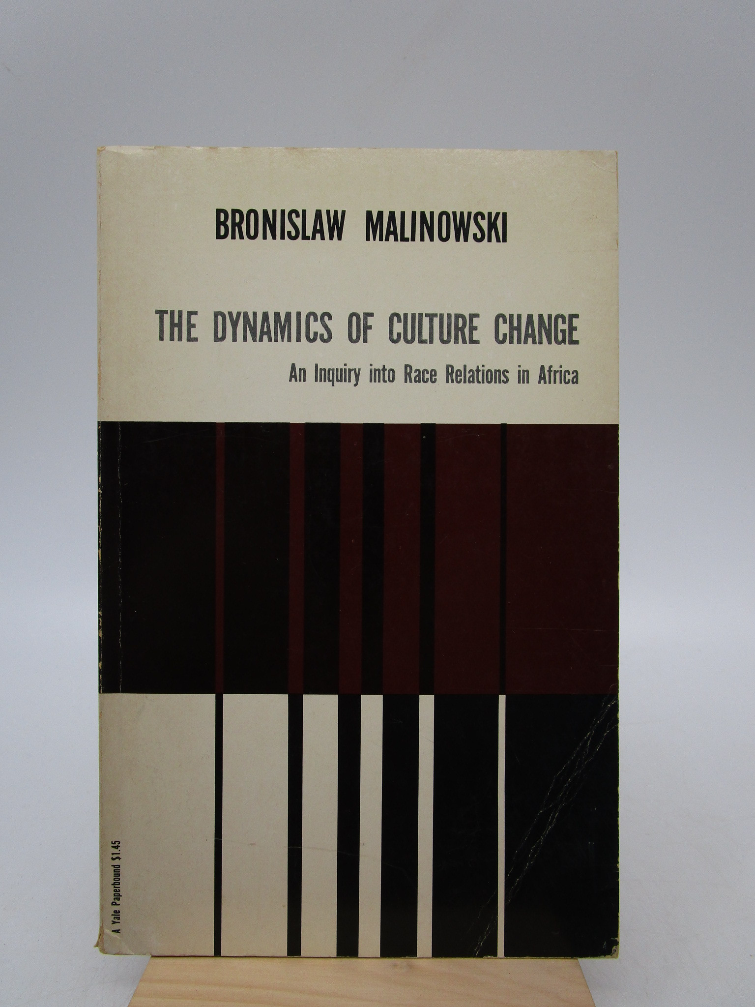 Image for The Dynamics of Cultural Change: An Inquiry into Race Relations In Africa