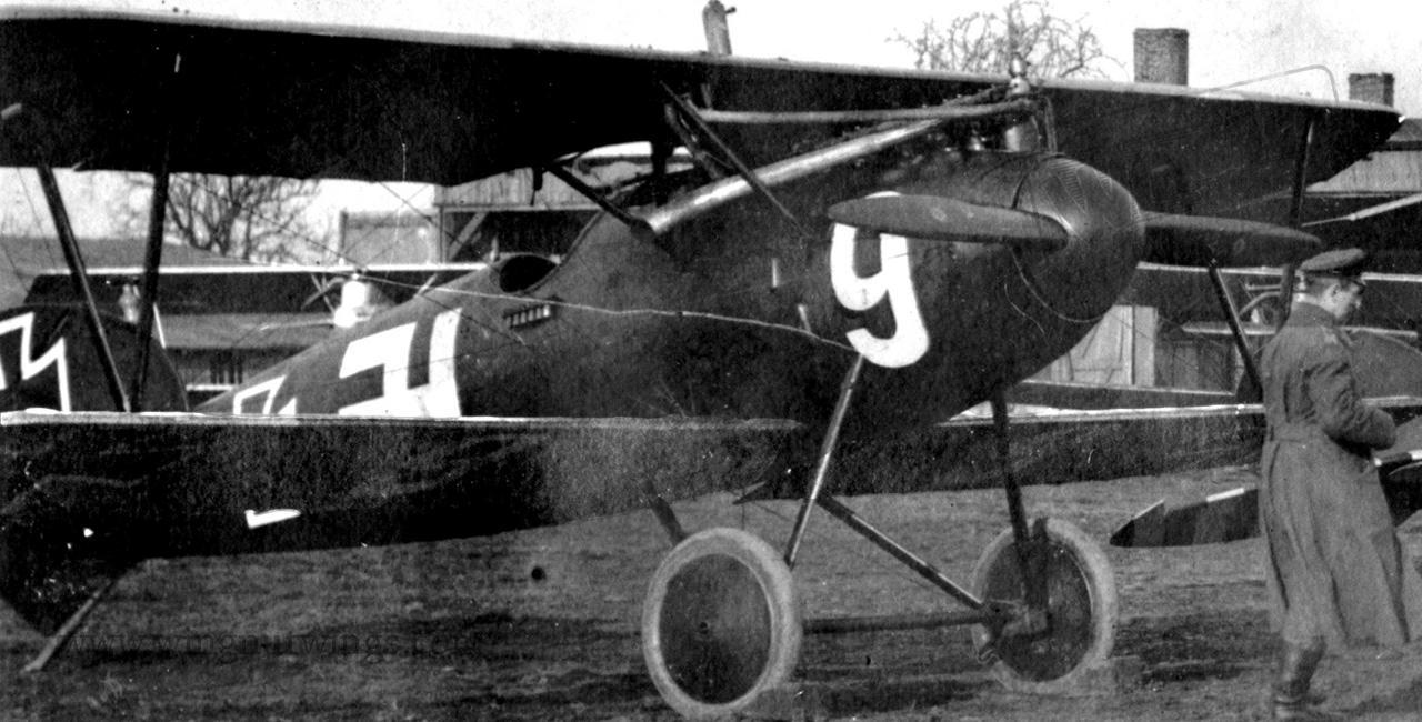 Albatros-D-Va-White-9-Jasta-37-AL0240-00