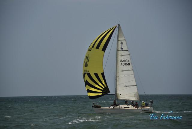 SARW-Shore-2021-04-24-137.jpg