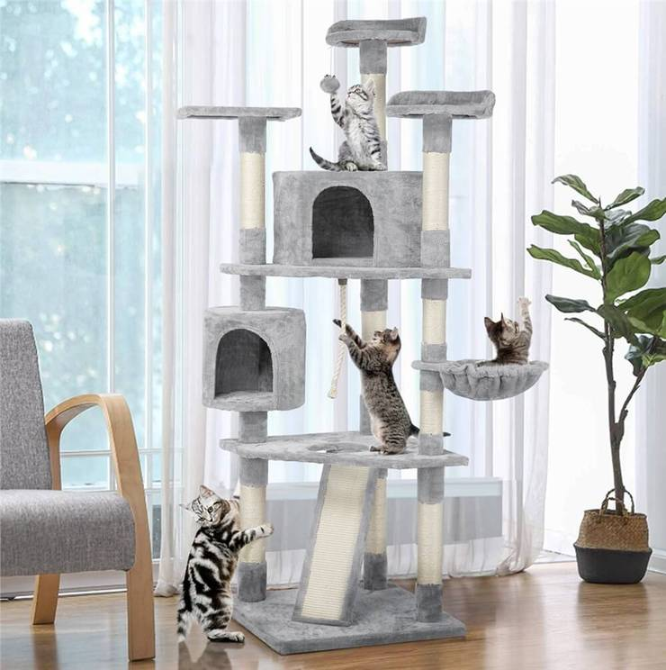 How to Choose the Right Cat Tree?