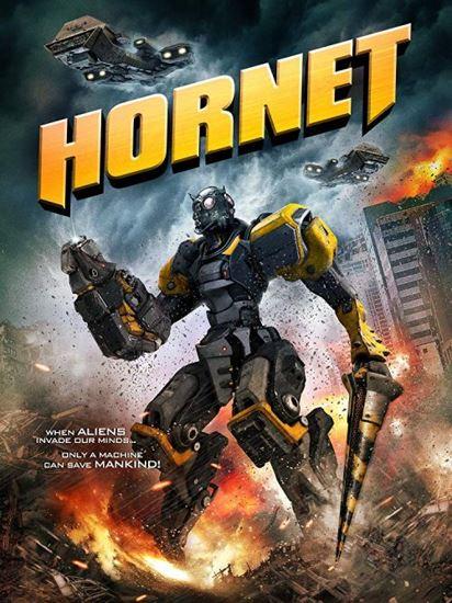 Hornet (2018) PL.BRRip.XviD-DiDi | Lektor PL