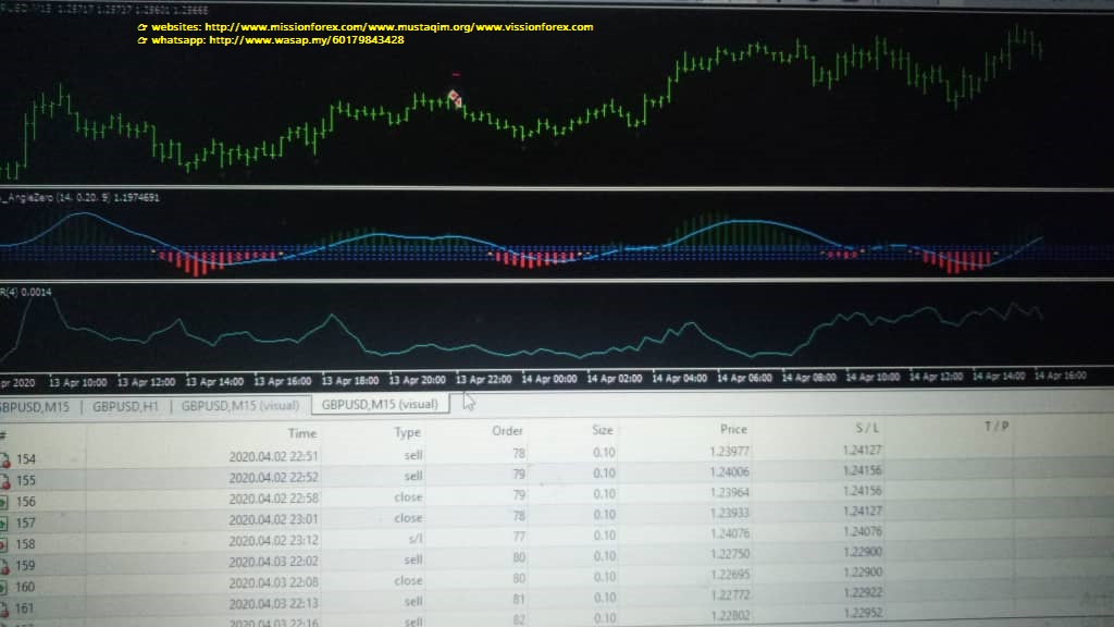 NEWTEC forex Expert Advisor 99%Winningtrades(SEE 2 MORE Unbelievable BONUS INSIDE!!FULL VERSION Pyramid EA V5)