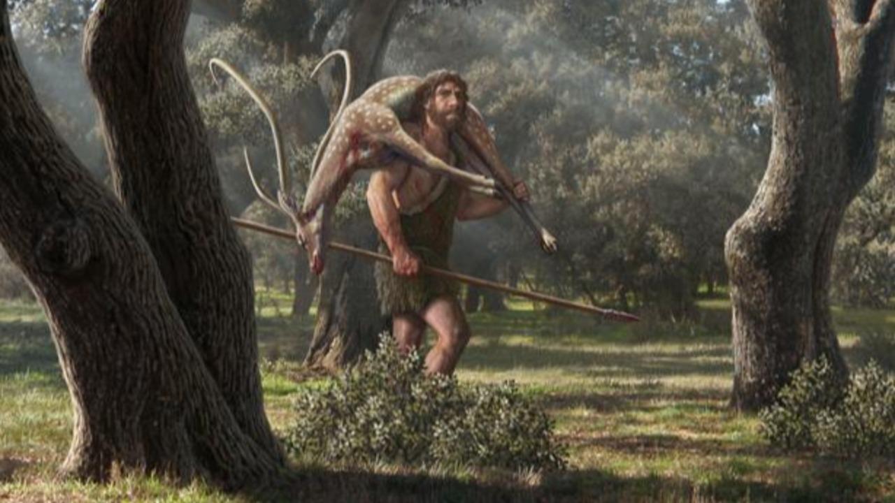 Nos separamos de los neandertales cientos de miles de años antes de lo que se creía
