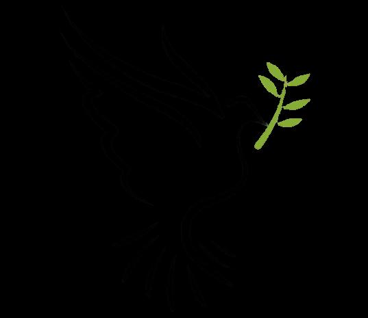 kisspng-bible-doves-as-symbols-holy-spirit-columbidae-holy-spirit-5b4c8ff8396840-9389767415317442482